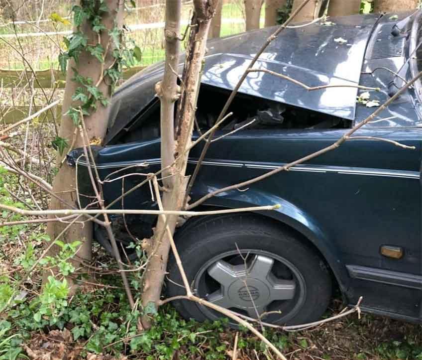 Der Wagen des 55-Jährigen prallte gegen mehrere kleine Bäume.