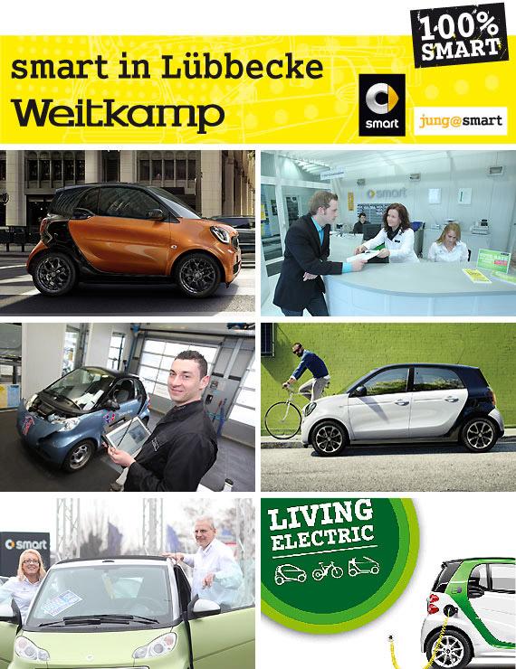 Zu der Unternehmensgruppe gehören heute ein Autorisierter Mercedes-Benz und smart Verkauf- und Servicebetrieb, eine Freie Werkstatt mit Tankstelle und Waschanlage sowie eine Autovermietung.