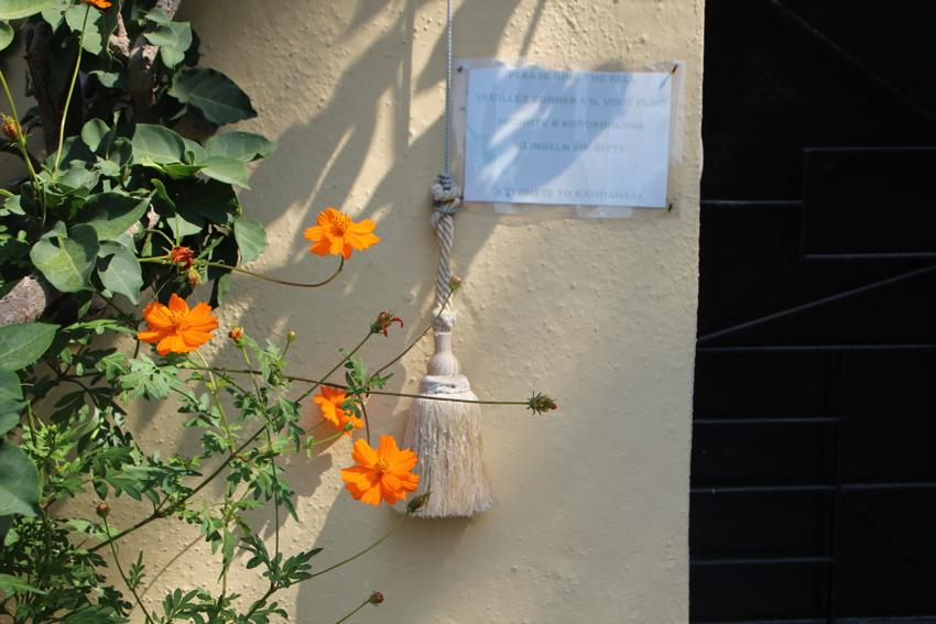 Dem Sommer auf der Spur auf Korfu