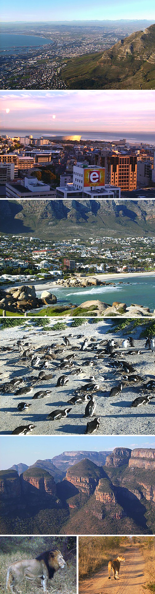 Die ganze Welt in einem Land: Das ist Südafrika.